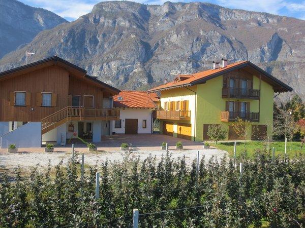 Foto esterno in estate Clementi