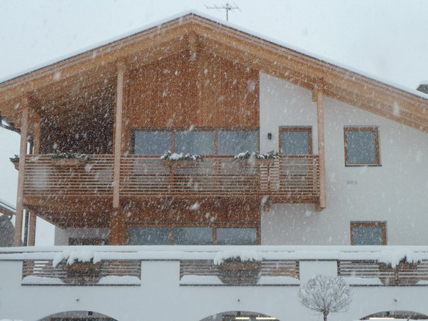 Foto esterno in inverno Te Plaza