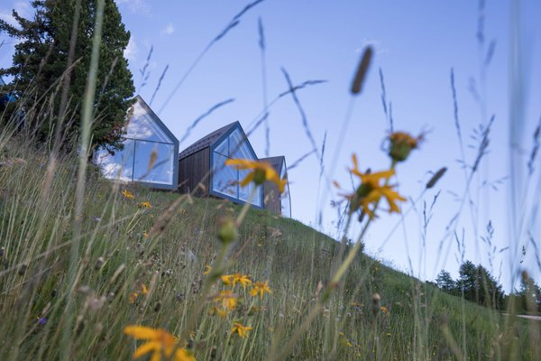 Photo exteriors in summer Oberholz
