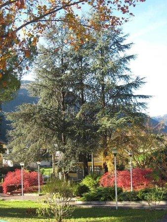 Foto del giardino Arta Terme