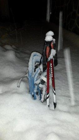 Winteraktivitäten Trient und Umgebung