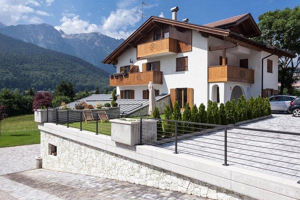 Foto esterno in estate Casa Orso Grigio