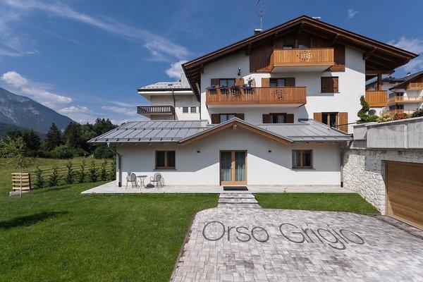 Foto estiva di presentazione Casa Orso Grigio - Appartamenti
