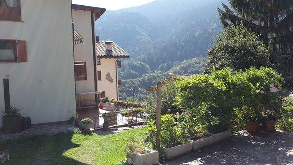 Foto esterno in estate Casarenata
