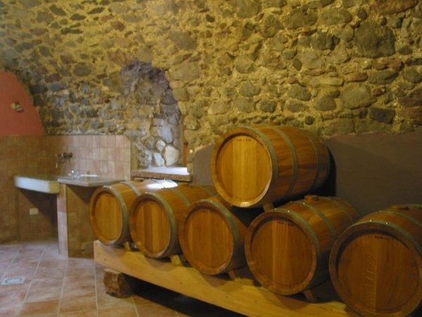 Foto di presentazione Azienda agricola Giulio e Mauro