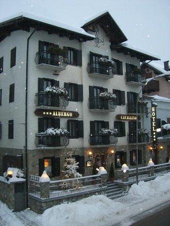 Foto invernale di presentazione B&B-Hotel Cavallino
