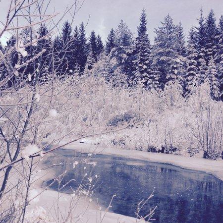 Gallery Sappada e Comelico inverno