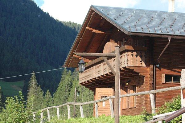 Foto esterno in estate Alpin Haus