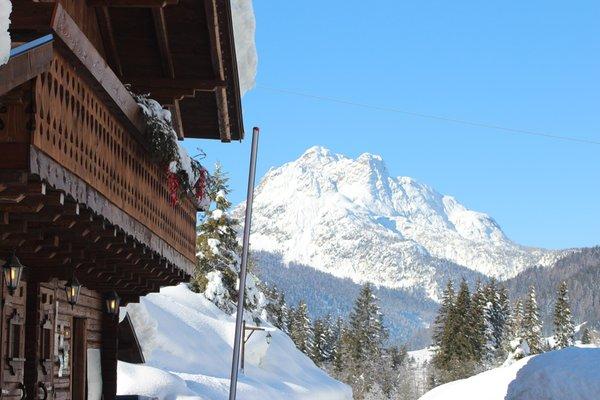 Foto invernale di presentazione B&B + Appartamenti Alpin Haus