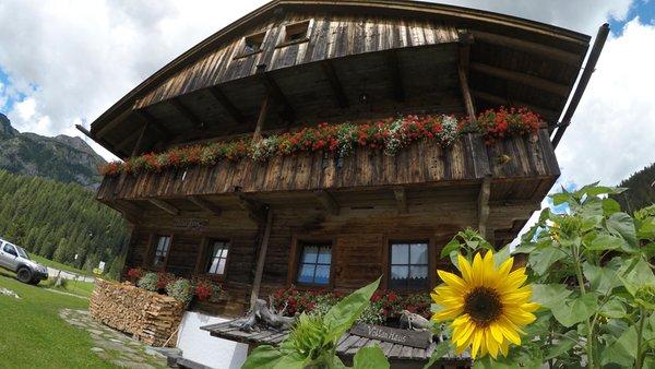Foto estiva di presentazione Voltan Haus - Camere in agriturismo