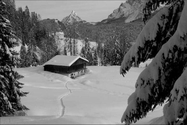 Bildergalerie Sappada Winter