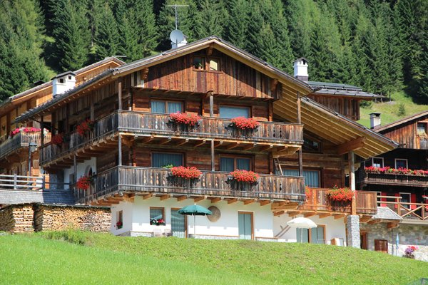 Foto estiva di presentazione Appartamenti Kratter Alpenplick