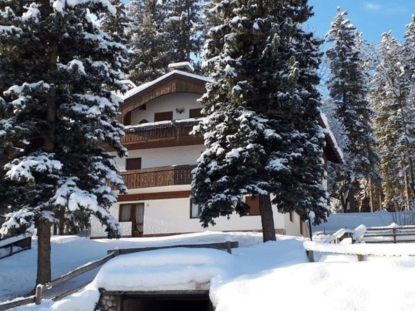 Winter Präsentationsbild Ferienwohnung Ski Hike Apartment Lungoboite