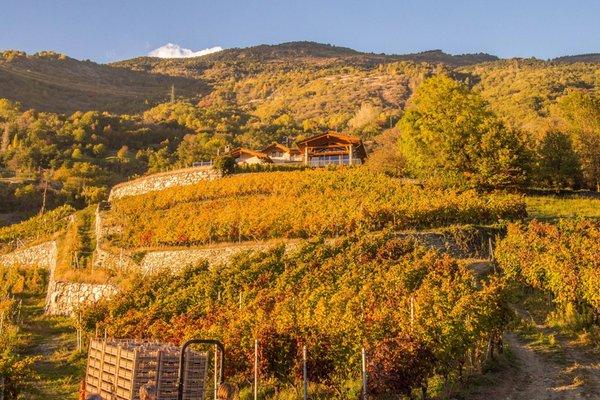 Lage Bauernhofspension Les Granges Nus (Aosta)