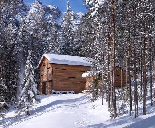 Foto invernale di presentazione Mountain Lodge Tamersc - Casa vacanze