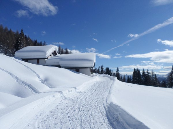 Foto invernale di presentazione Rifugio Rinfreddo