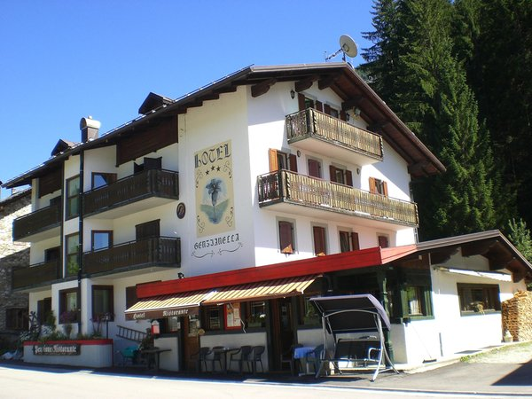 Summer presentation photo Genzianella - Hotel 3 stars