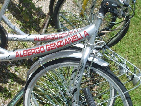 Genzianella - Hotel 3 stars Presenaio