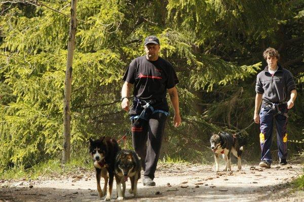 Sommer Präsentationsbild Husky Village - Sleddog Ranch