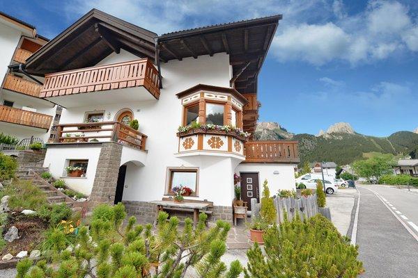 Foto estiva di presentazione Appartamento Everest Bruno