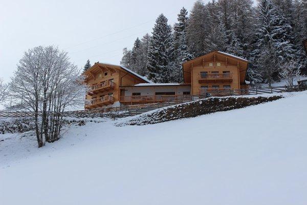 Foto invernale di presentazione Kalchgruberhof - Residence 4 stelle