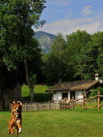Photo of the garden Forgaria nel Friuli