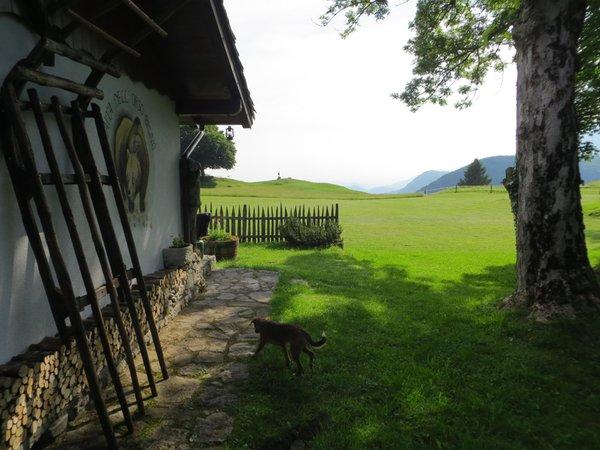 Photo exteriors in summer Tana da l'Ors