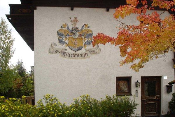 Foto esterno in estate Bachmann