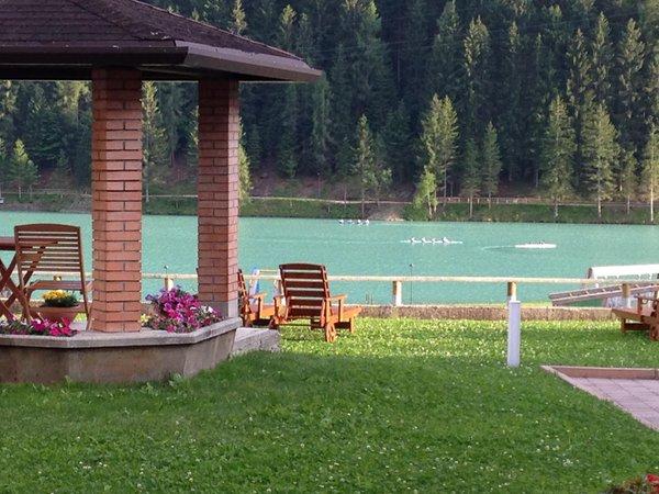 Photo of the garden Auronzo di Cadore