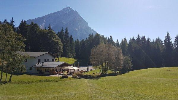 Foto esterno in estate Alpe di Senes