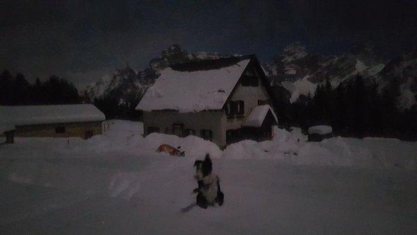 Foto Außenansicht im Winter Ciauta