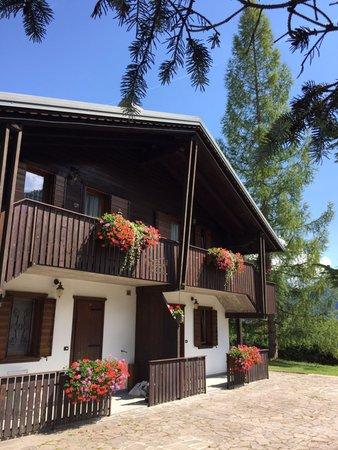 Foto Außenansicht im Sommer Villa il Larice
