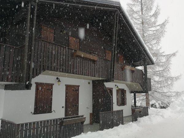 Foto Außenansicht im Winter Villa il Larice