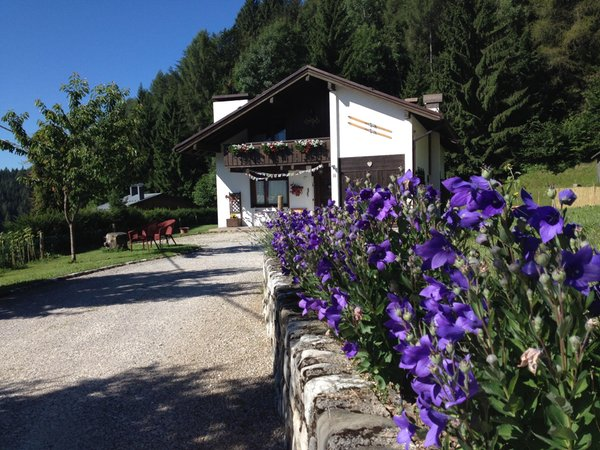 Foto Außenansicht im Sommer Orizzonti Montani