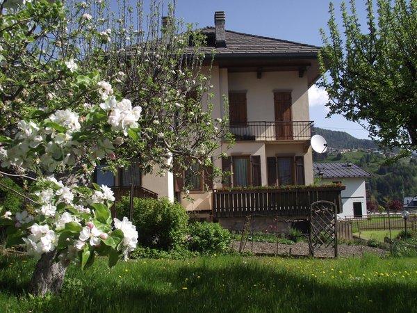 Foto estiva di presentazione Appartamento Casa Vascellari