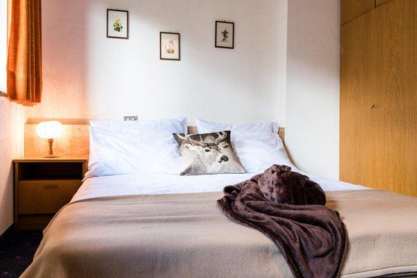 Photo of the room Apartment Matilde