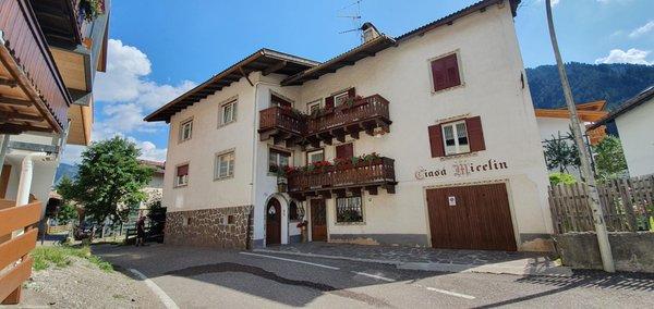 Summer presentation photo Apartments Ciasa Micelin