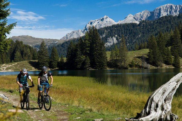 Photo gallery Val di Sole and Val Rendena summer