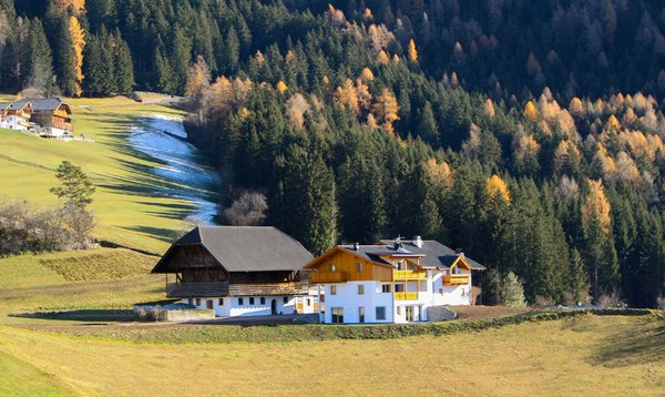Foto estiva di presentazione Putzerhof - Appartamenti in agriturismo