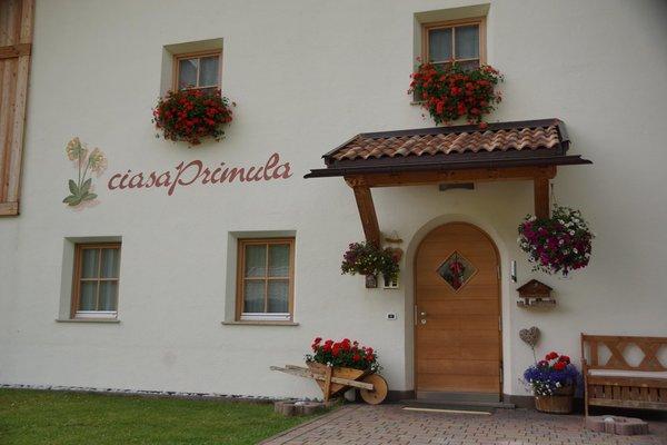 Foto esterno in estate Ciasa Primula