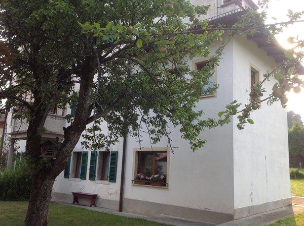 Photo exteriors in summer Casa Cercenà