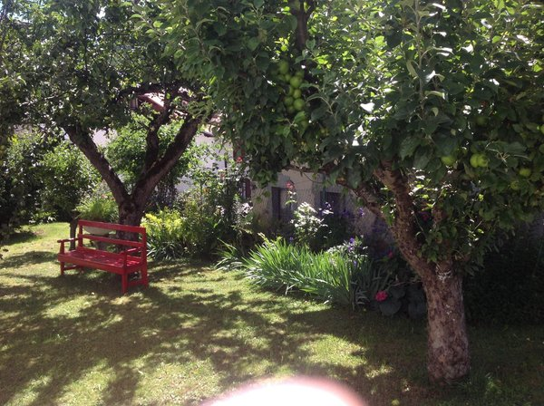Photo of the garden Val di Zoldo - Forno