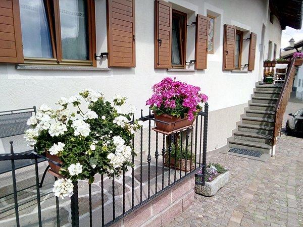 Foto estiva di presentazione Appartamenti Delvai Cesarina