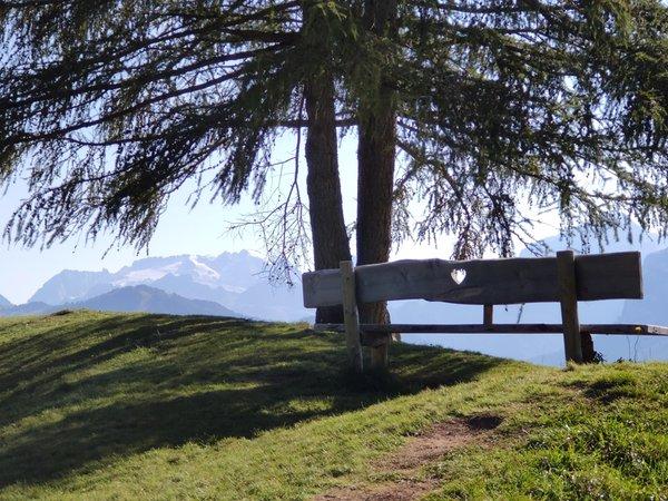 Foto di alcuni dettagli Villa Erica