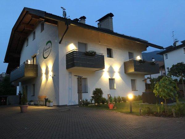 Foto Außenansicht im Sommer Apartment Obermair
