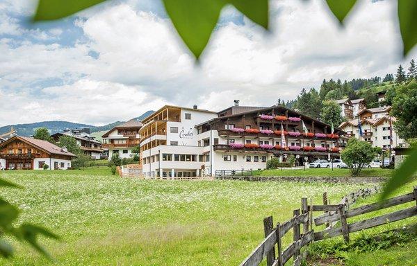 Foto estiva di presentazione Hotel Condor