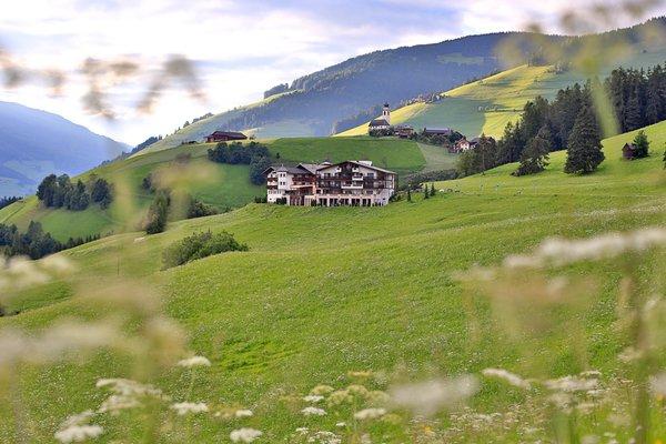 Foto estiva di presentazione Hotel Bella Vista Hotel Emma