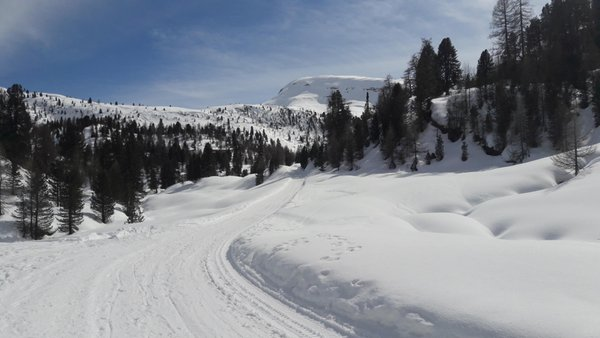 Photo gallery Plan de Corones / Kronplatz winter
