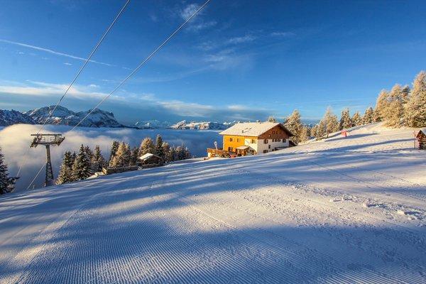 Foto Außenansicht im Winter Berghotel Panorama