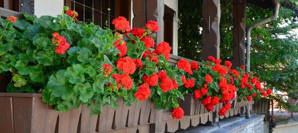 Foto del balcone Garni Sayonara